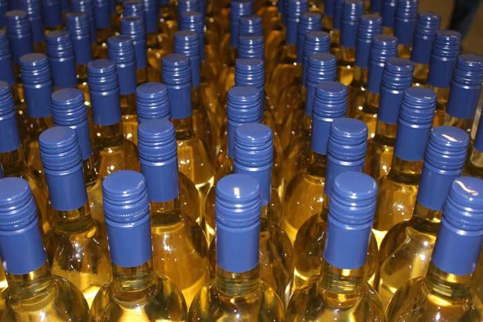 Weißweine Weingut Scholtes